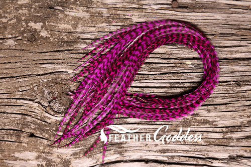 Grizzly dyed Magenta Hair Feathers