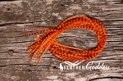 Grizzly dyed Orange Hair Feathers