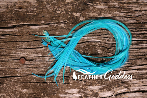 Turquoise Hair Feathers