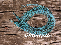 Grizzly dyed Turquoise Hair Feathers