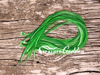 Hunter Green Hair Feathers