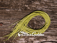 Olive dyed Feathers