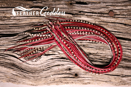 """Cranberry Delight Hair Feathers, 14"""" - 16"""""""