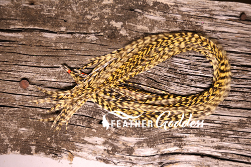 Hair Feathers Grizzly & Golden Yellow