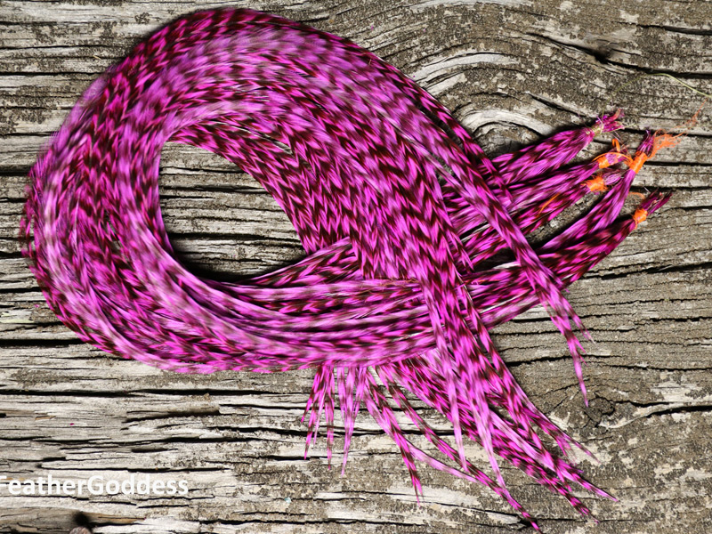 Hair Feathers Hot Pink & Grizzly (long)