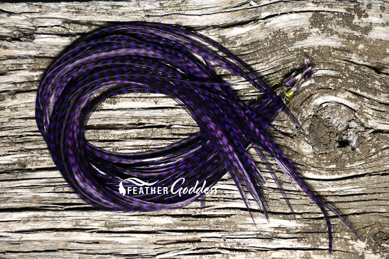 Hair Feathers Grizzly dyed Purple