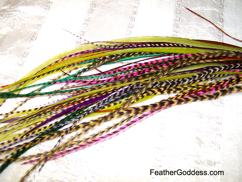 Multi-Color Hair Feathers