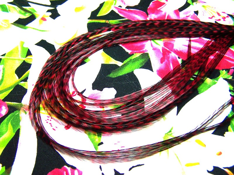 Grizzly dyed Claret