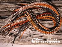 Autumn-Breeze Hair Feathers, 14